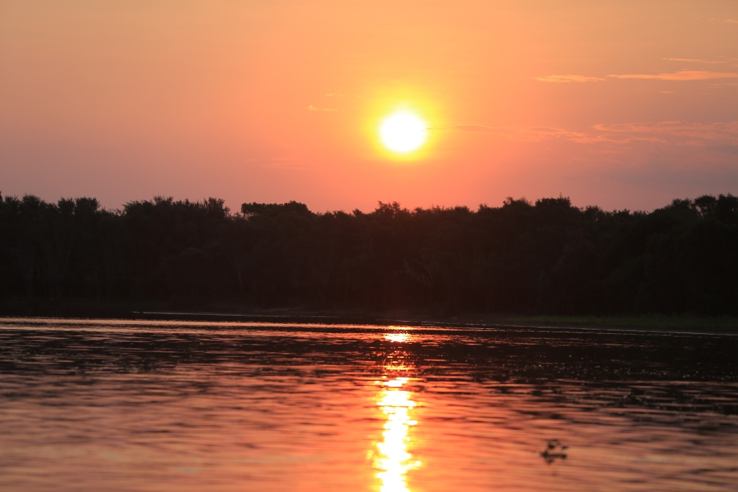 Our final Pantanal Sunset