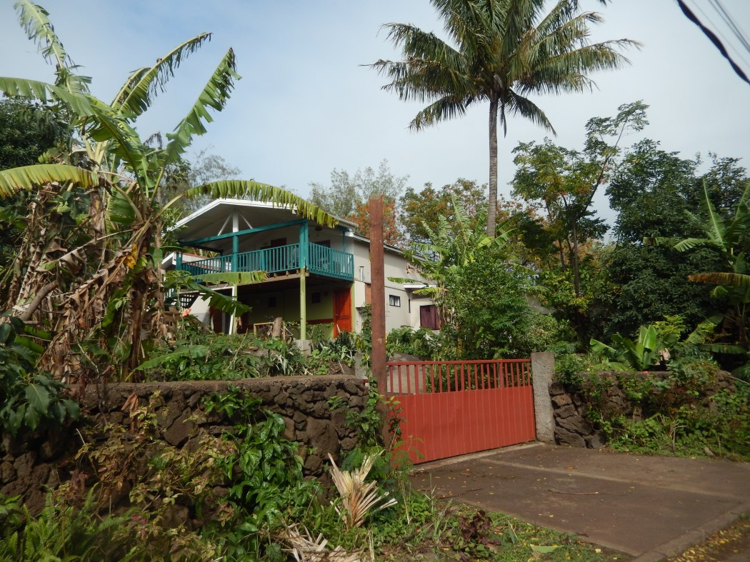 A typical house in town, surrounded by tropical plants such as the local banana tree