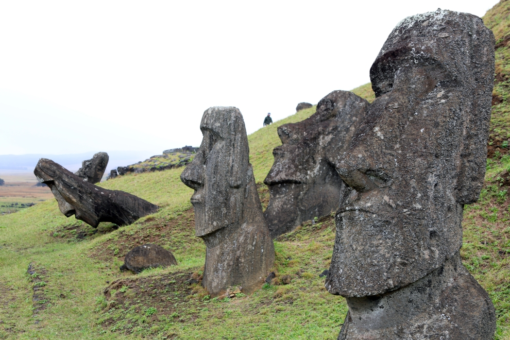 These moai are apparently buried halfway in the grass and some are falling over.  Fascinating!