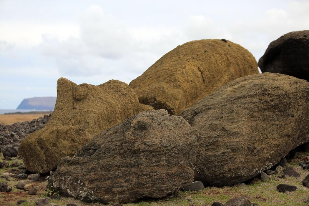 A fallen moai